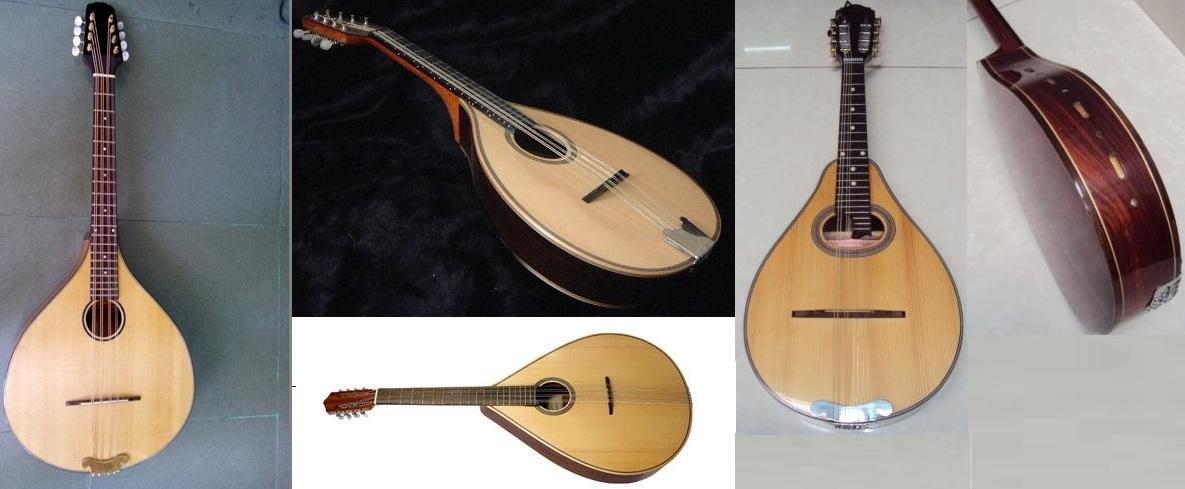 Mua đàn mandolin giá rẻ tại học môn
